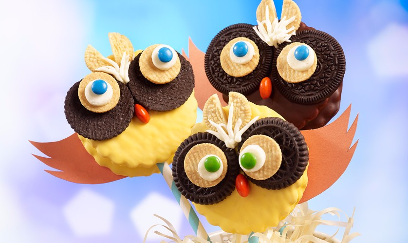 Little Debbie® Friendly Owl Marshmallow Pie Pops