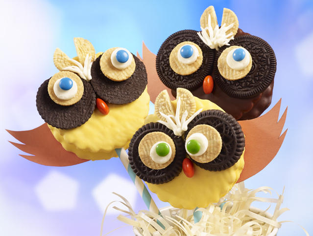 Friendly Owl Marshmallow Pie Pops